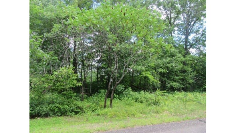 On Jackson Heights Rd Cassian, WI 54529 by Re/Max Property Pros-Minocqua $99,750