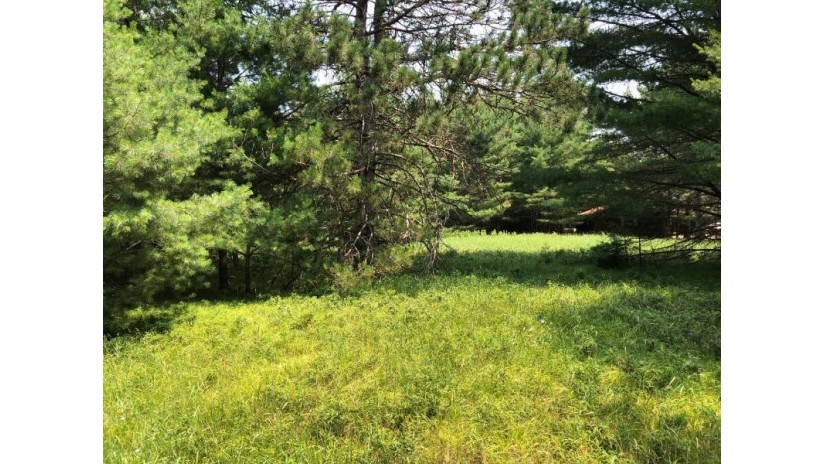 Parcel 6 Beaver Tr Cloverland, WI 54521 by Eliason Realty Of The North/Er $89,900