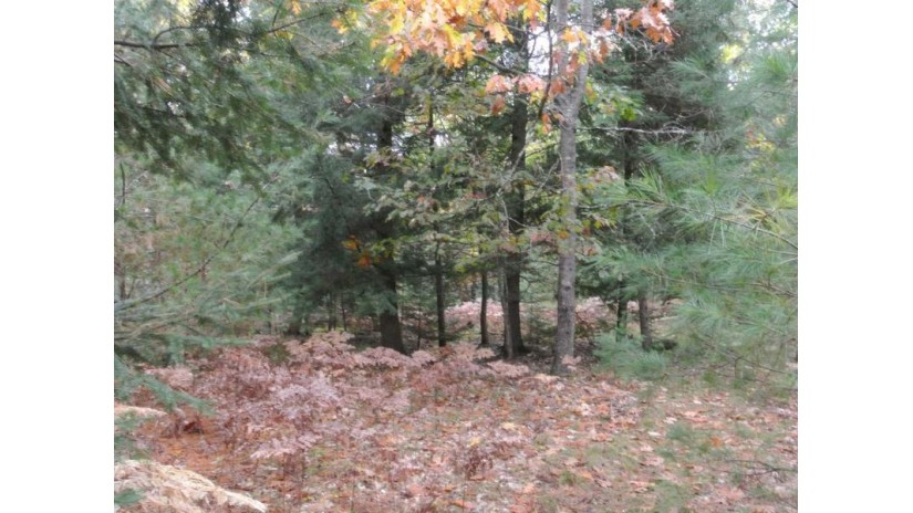 6692 Col Himes Rd Three Lakes, WI 54562 by Re/Max Northern Lakes Llc $29,000