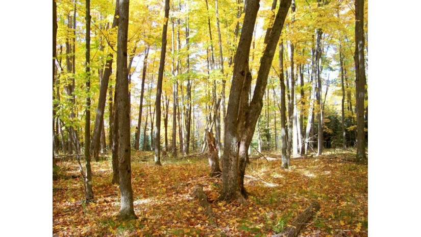 #8 & #10 Eagle Ridge Ln Presque Isle, WI 54557 by Headwaters Real Estate $49,950