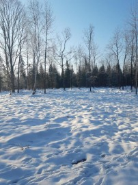 Lot 1 Mercer Lake Cr S, Mercer, WI 54547
