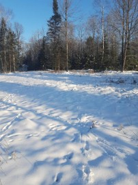 Lot 2 Mercer Lake Cr S, Mercer, WI 54547