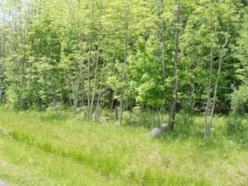 Lot 13 Margaret Ln, Lake, WI 54552