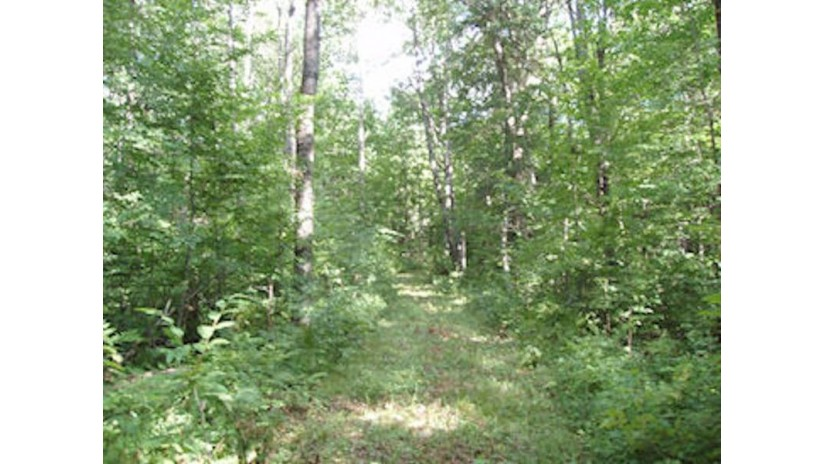 On Pixley Wilderness Shores Shores Park Falls, WI 54552 by Birchland Realty Inc./Park Falls $48,900