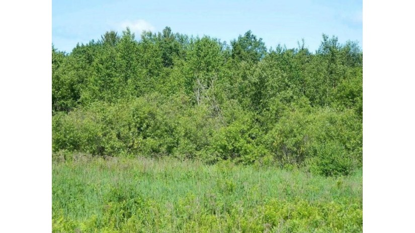 On Dorscheid Road Winter, WI 54896 by Birchland Realty Inc./Phillips $97,000