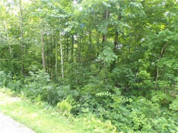 2.5 Acres 8th Street, Cornell, WI 54732