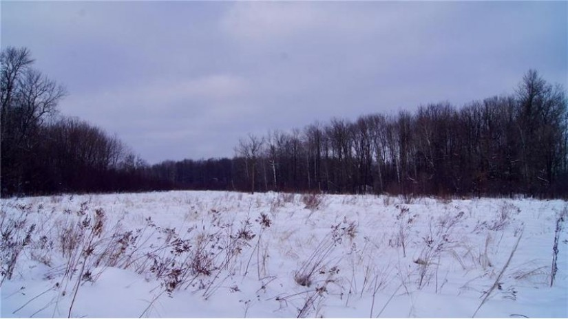 0 County Road G Holcombe, WI 54745 by Weiss Realty Llc $399,000