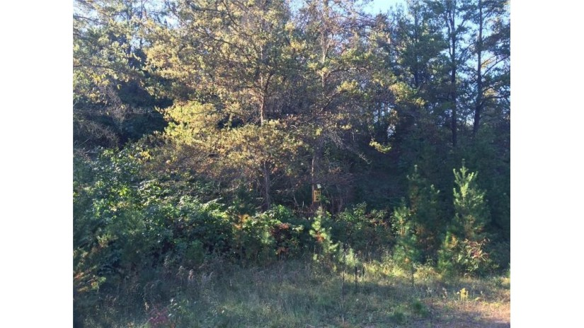 Lot 2 Bean Brook Ln Lane Stone Lake, WI 54876 by Coldwell Banker Real Estate Consultants $35,100