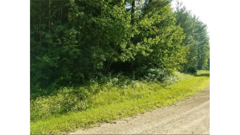 Lot 18 297th Street Eau Galle, WI 54737 by Asher Realty Group $19,900