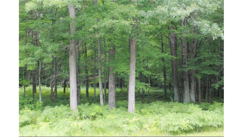 Lot 2 Scobie Place Eau Claire, WI 54703 by Re/Max Real Estate Group $49,900
