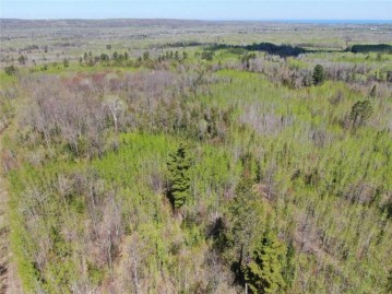 0 Near Mcinerney Road Road, Herbster, WI 54844