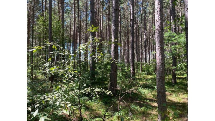 Lot 3 Jenny Lane Hayward, WI 54843 by Woodland Developments & Realty $28,500