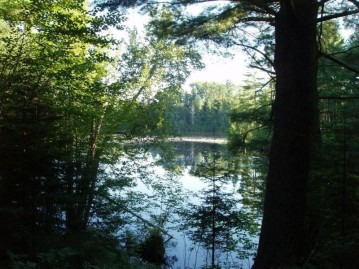 On Pixley Wilderness Shores Rd, Park Falls, WI 54552
