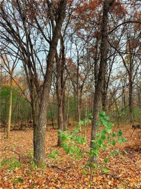 Lot 01 30th Street, Elk Mound, WI 54739