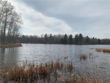 6445 West Little Ripley Spur, Shell Lake, WI 54871