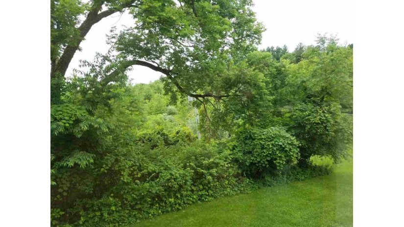 Xxx Devil'S Backbone (10 Acres) Oregon, IL 61061 by Re/Max Of Rock Valley $94,900