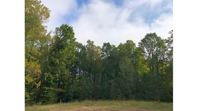 James Way Brazeau, WI 54161 by Gina Cramer Realty LLC $19,900