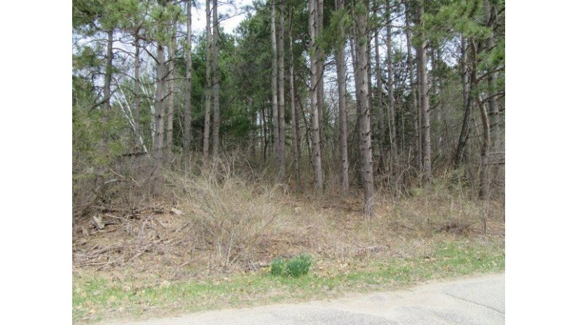 Hwy 22 Wautoma, WI 54982 by The Ellickson Agency, Inc. $13,000