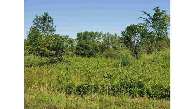 Scenic Heights Drive Union, WI 54217 by Realty World Greater Green Bay, Ltd $69,900