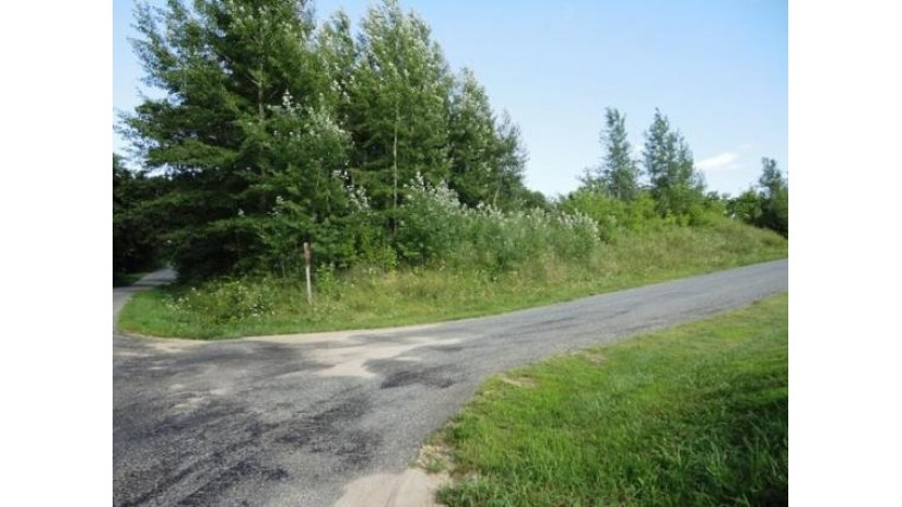 L8 Holden Rd Tomah, WI 54660 by Re/Max Hometown Real Estate $17,000