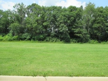 972 Pine Ridge Ct, Brownsville, WI 53006-0000