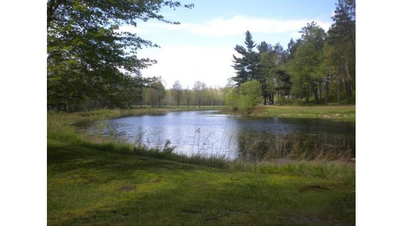 N9350 County Road H Skanawan, WI 54487 by Castle Rock Realty Llc $674,900