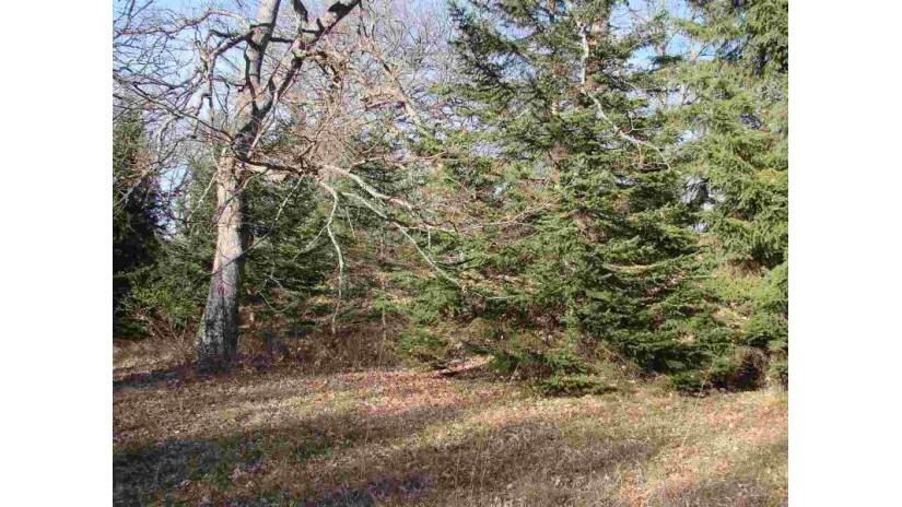 N8436 Starr Rd Marcellon, WI 53901 by Century 21 Affiliated $79,950