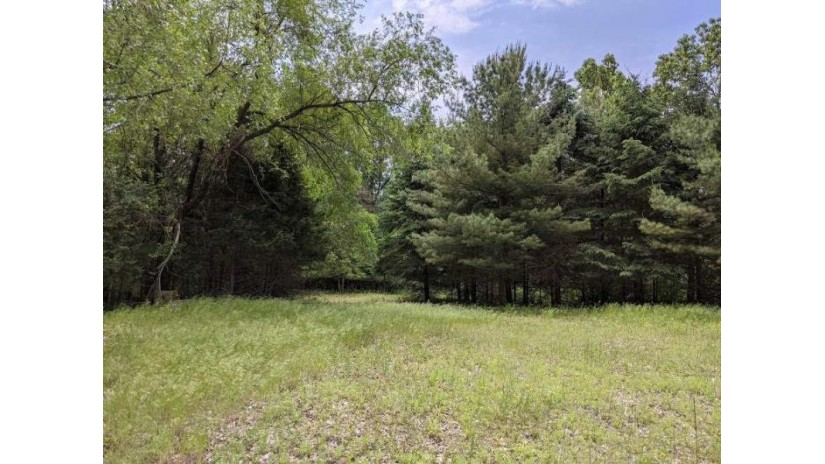 25.51 Ac County Road A Delton, WI 53965 by Century 21 Affiliated $1,950,000
