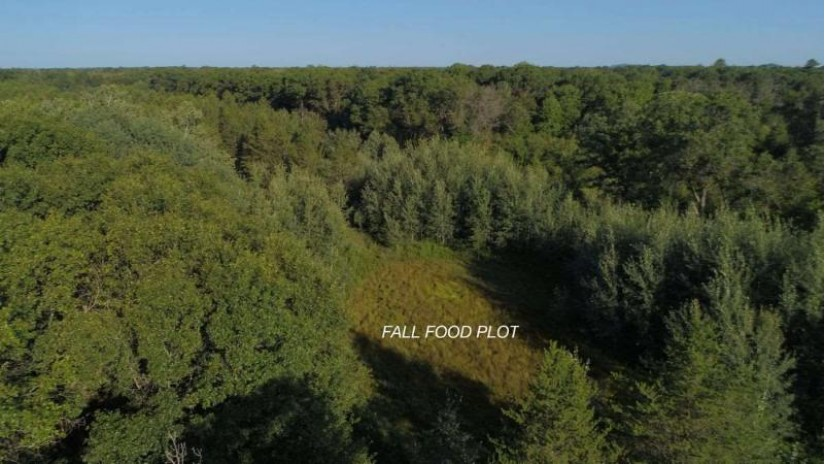 120 Ac 6th Ave Big Flats, WI 53934 by United Country Midwest Lifestyle Properties $330,000