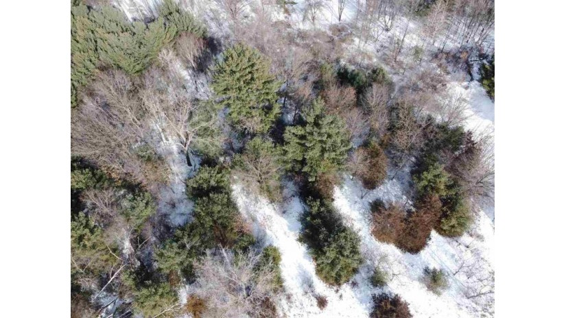 L59 & L60 S Fur Dr Springville, WI 53965 by First Weber Inc $16,500