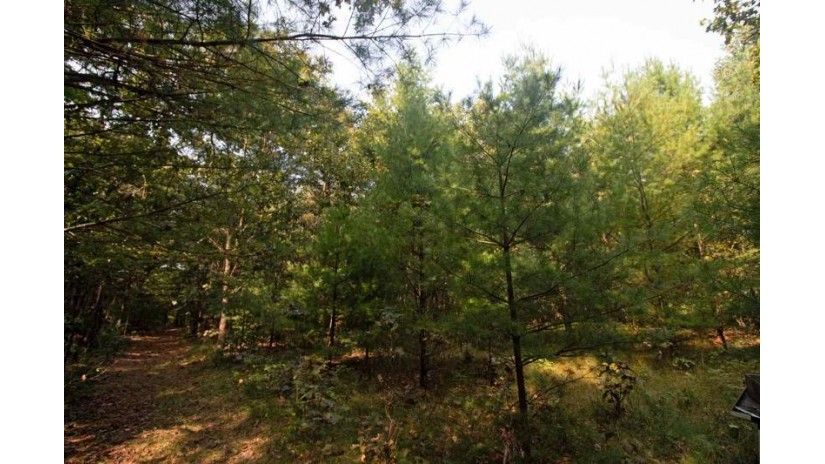 L1 White Pine Way Spring Green, WI 53588 by Century 21 Affiliated $64,200