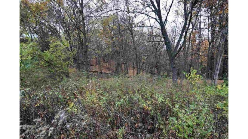 L369 Matterhorn Dr Woodland, WI 53941 by Re/Max Preferred $4,000