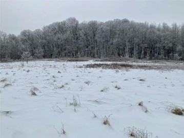 Lot 11 938th St, Elk Mound, WI 54739
