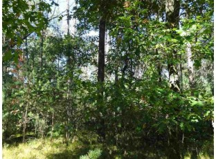 Lot 175 Timber Tr New Lisbon, WI 53950