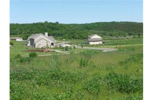 L98 Red Hawk Valley, Black Earth, WI 53515