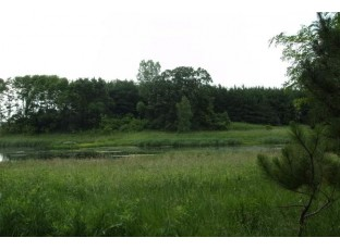 35 Ac County Road Cm Pardeeville, WI 53954