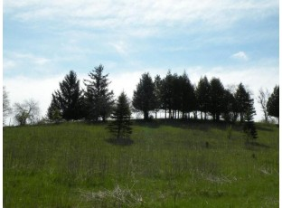 225 Stone Hill Ct Ripon, WI 54971