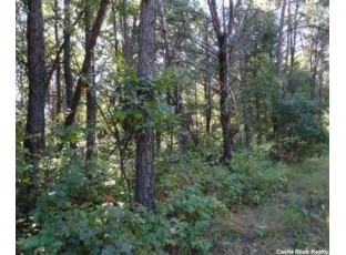 L94 Timber Tr New Lisbon, WI 53950