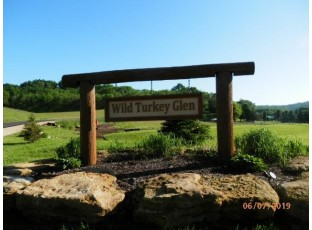 L1 Wild Turkey Ln Richland Center, WI 53581