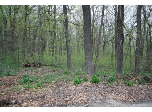 17 Ac E Valley St Dodgeville, WI 53533