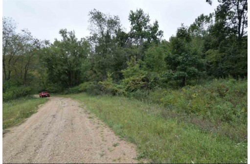 L44 STAGHORN Fawn Ct, La Valle, WI 53941