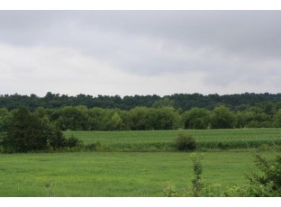 113.28 Ac King Rd Mineral Point, WI 53565