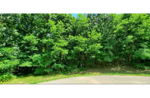 LOT 13 Oak Hill Estates, Mauston, WI 53948
