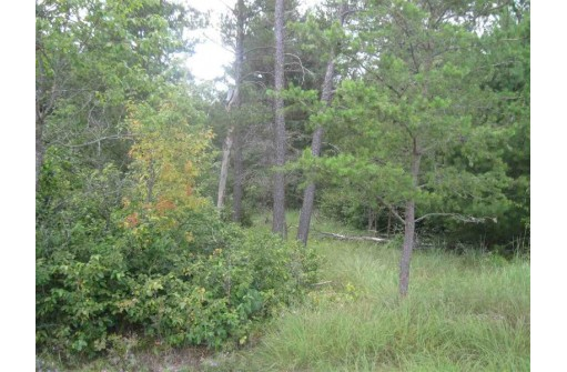L48 9th Ave, Friendship, WI 53934