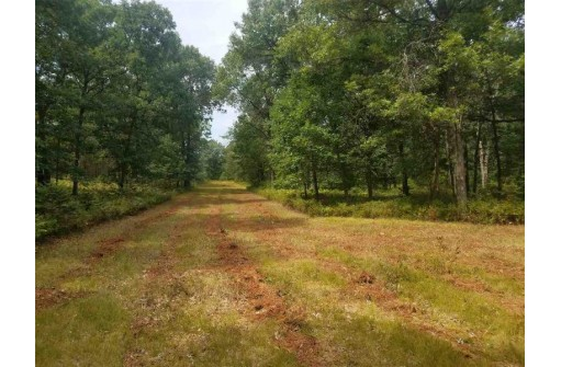 L28-29 Trails End Ct, Mauston, WI 53948