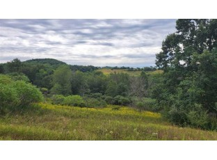 Lot 10 & 11 Pheasant Ct La Valle, WI 53941