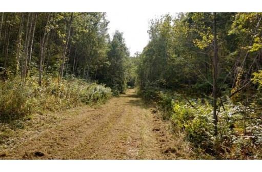 275 Ac Potters Rd, Warrens, WI 54666