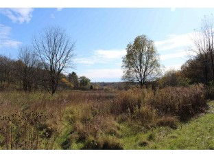 10 Ac Meadow Brook Rd Argyle, WI 53504