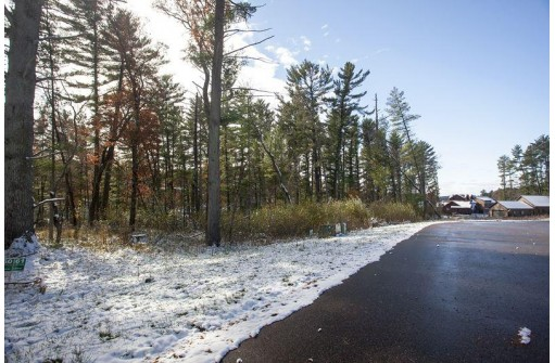 LOT 61 East Shore Nepco Lake, Wisconsin Rapids, WI 54494