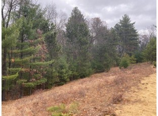 1.04 AC Blue Heron Dr Warrens, WI 54666